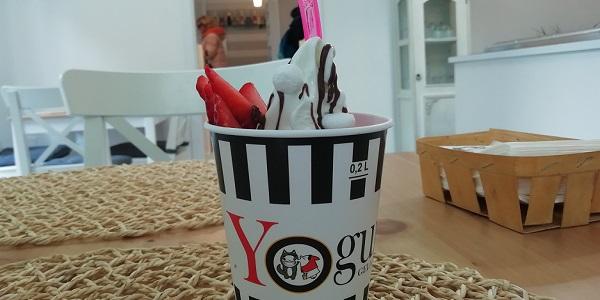 yogurtino1